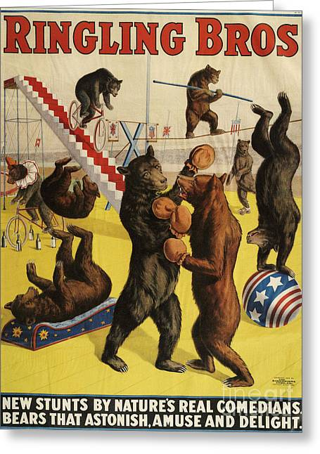 Ringling Bros 1900s Bears Performing Greeting Card by The Advertising Archives