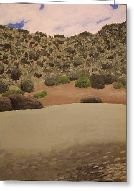 Rio Grande New Mexico Greeting Card by Elizabeth Sullivan