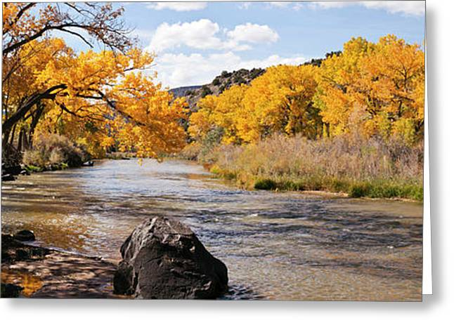 Rio Grande River At The Orilla Verde Greeting Card by Panoramic Images