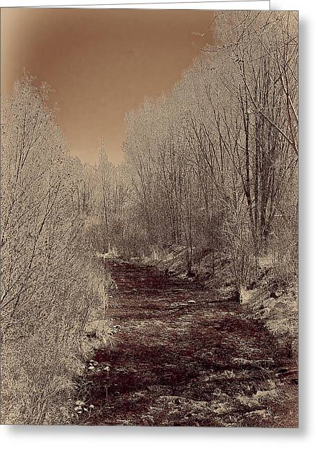 Rio Taos Bosque Iv Greeting Card