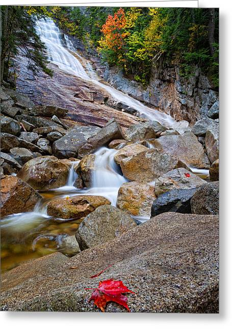 Ripley Falls And Red Maple Leaf Greeting Card by Jeff Sinon