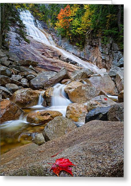 Ripley Falls And Red Maple Leaf Greeting Card