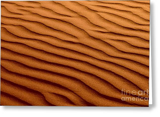 Rippled Red Brown Beach Sand Texture Photograph By Susan