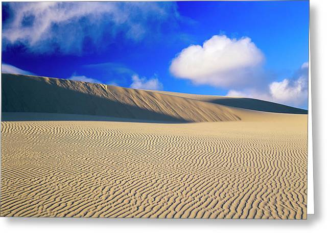 Rippled Sand And Dunes With Blue Sky Greeting Card