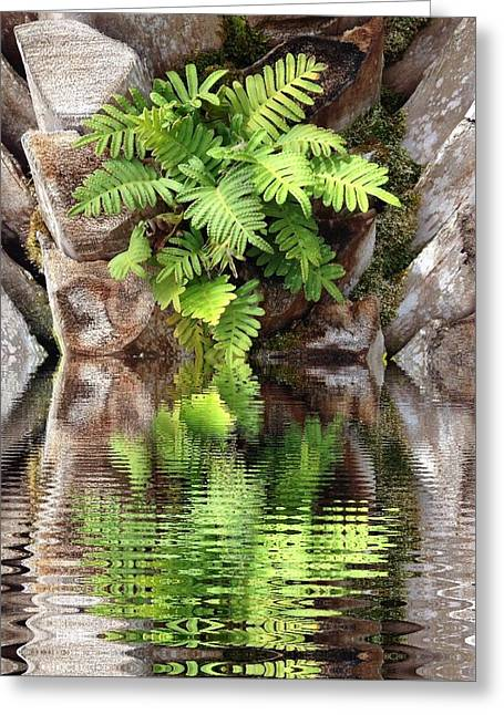 Ripples And Reflection Greeting Card
