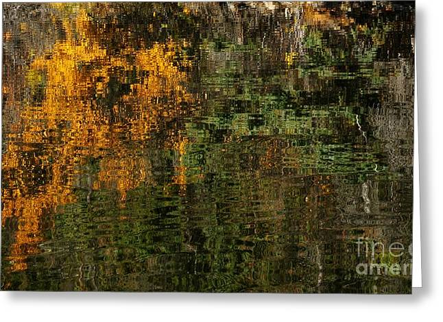 Ripples And Reflections Greeting Card by Vivian Christopher