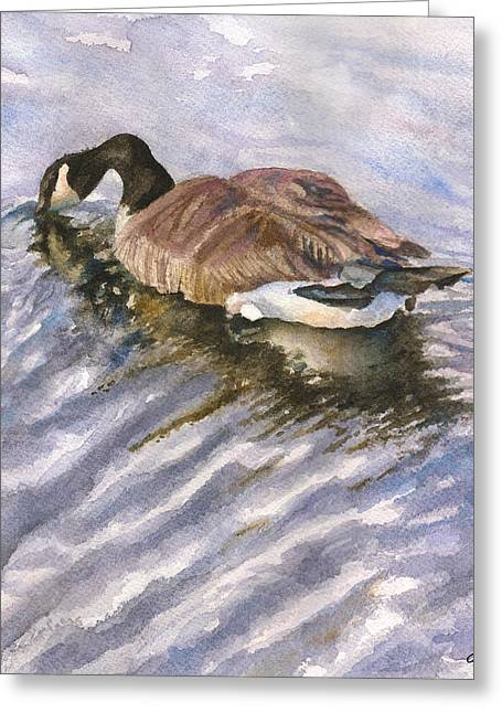 Ripples Greeting Card by Anne Gifford
