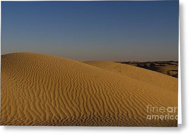 Ripples In Sahara Desert Sand Greeting Card