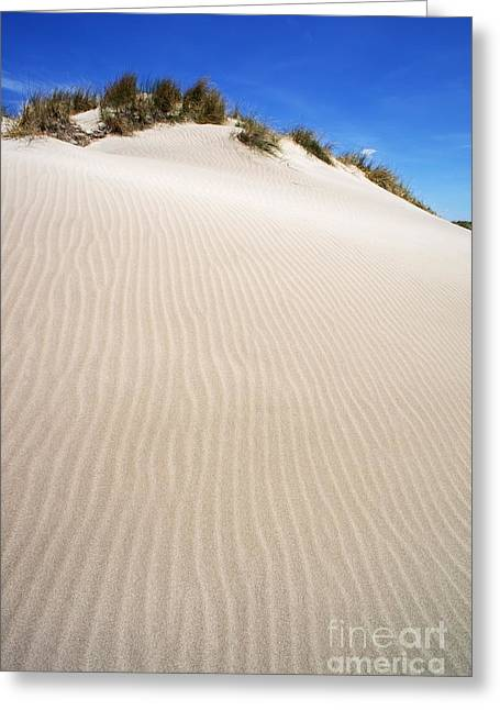 Ripples In Sand Dune Greeting Card by Sami Sarkis