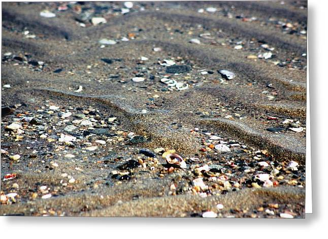 Greeting Card featuring the photograph Ripples In The Sand by Judy Palkimas
