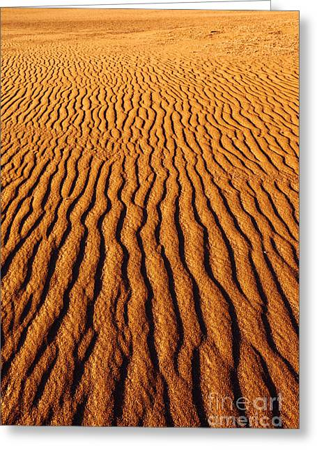 Ripple Patterns In The Sand 3 Greeting Card by James Brunker