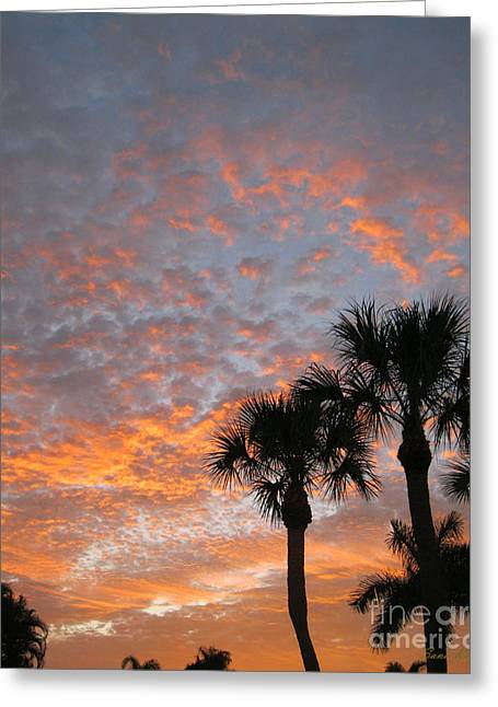 Rise And Shine. Florida. Morning Sky View Greeting Card
