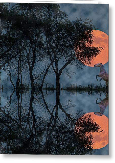 Rise II Greeting Card by Betsy Knapp