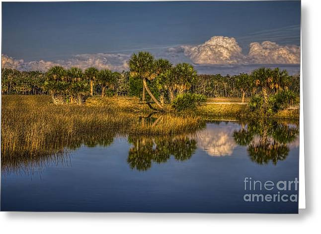 Rising Tide Greeting Card by Marvin Spates
