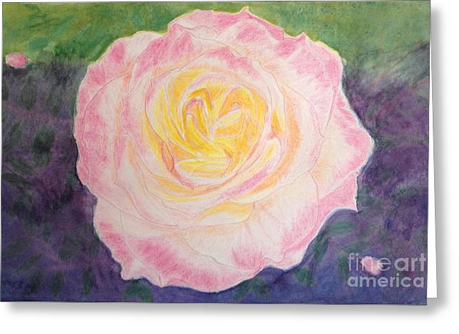 Ritzy Rose In Watercolor Pencil Greeting Card