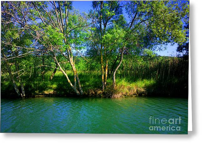 River Beauty Greeting Card
