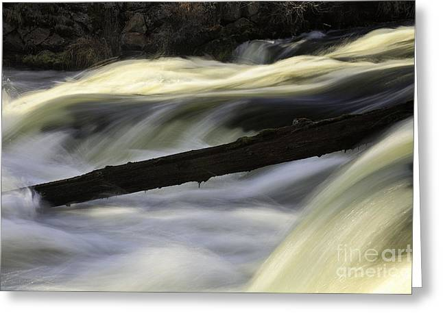 River Contours Greeting Card