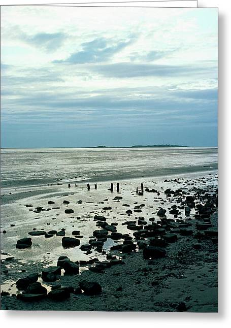 River Dee Estuary Greeting Card by Dr Rob Stepney/science Photo Library