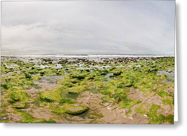 River Delta And Wetlands At Low Tide Greeting Card by Panoramic Images