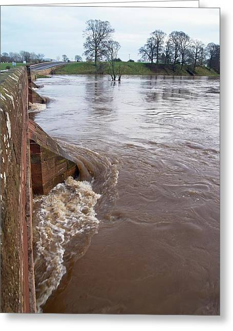 River Eden Flooding. Greeting Card