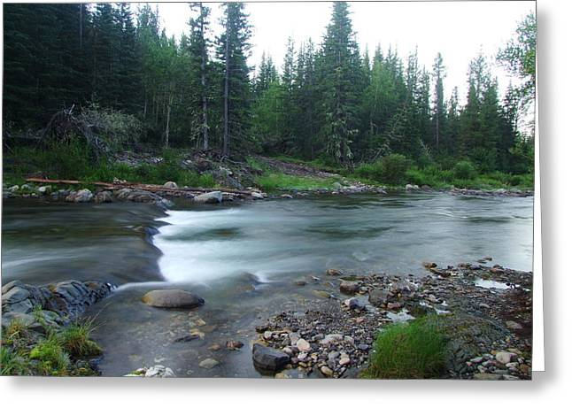 Trout Stream 001 Greeting Card