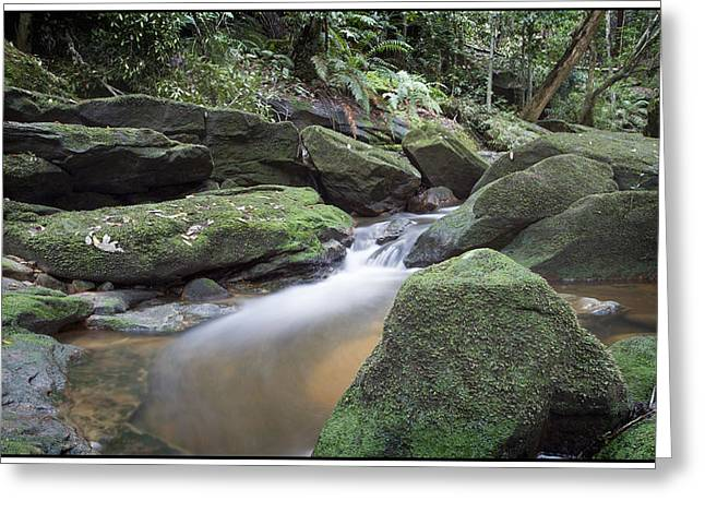 River Flow Greeting Card by Steve Caldwell