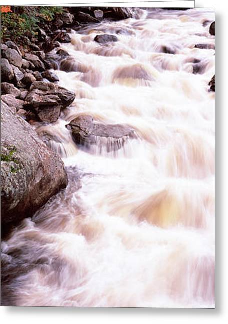 River Flowing Through A Forest, Ausable Greeting Card