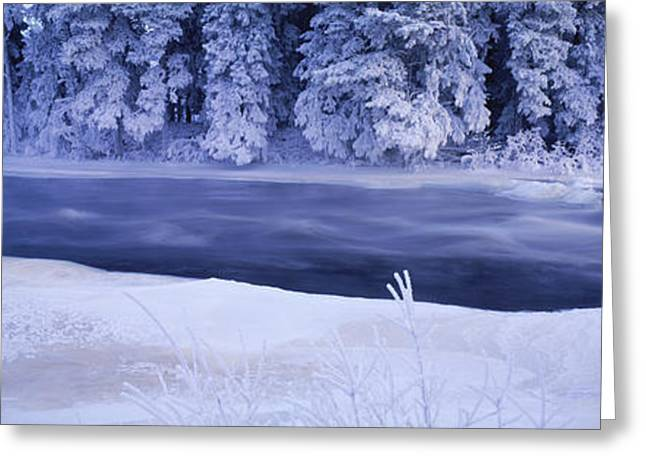 River Flowing Through A Snow Covered Greeting Card by Panoramic Images