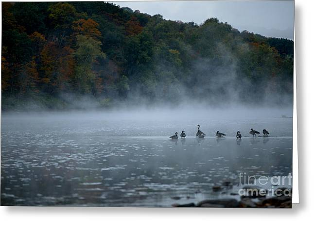 River Geese Greeting Card