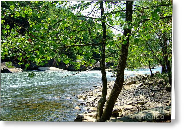 Greeting Card featuring the photograph River Gorge by Deborah DeLaBarre