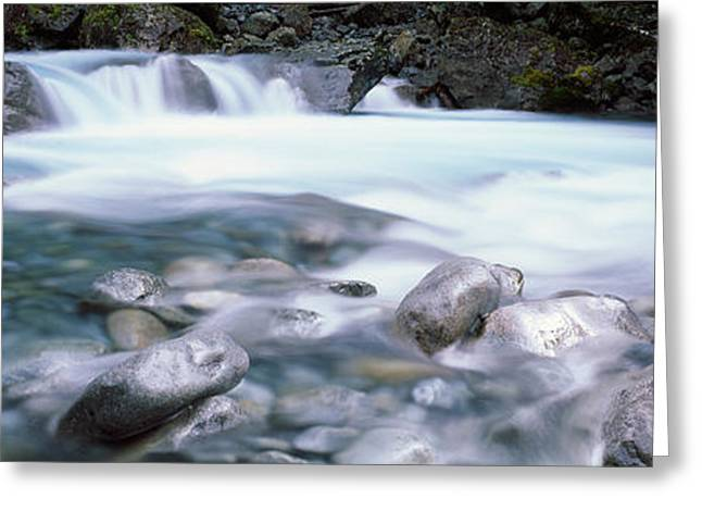 River, Hollyford River, Fiordland Greeting Card by Panoramic Images