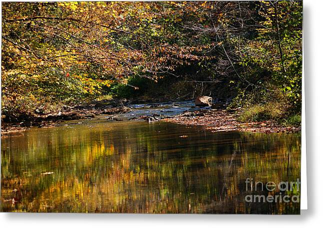 River In Autumn Greeting Card by Lisa L Silva