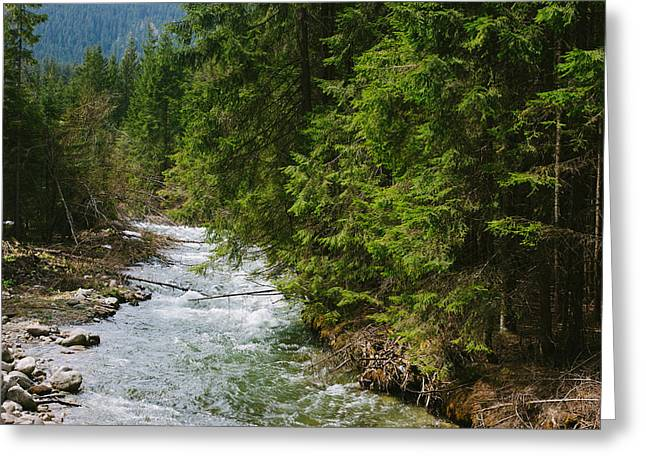 River In The Mountains Greeting Card