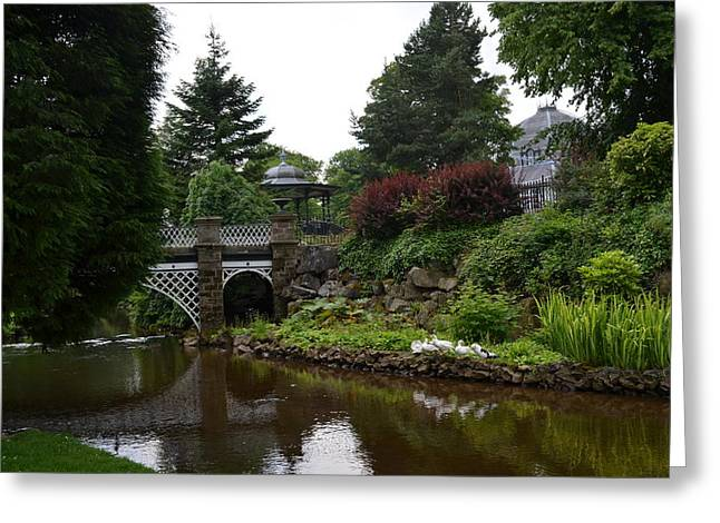 River In The Park Greeting Card by Karen Kersey