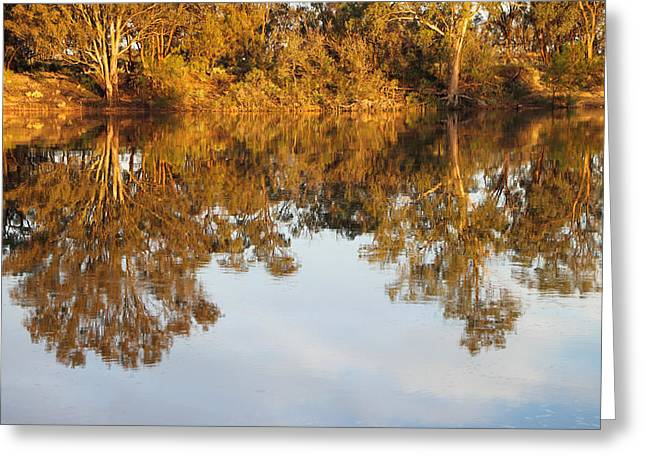 River Murray Reflections Early Evening Greeting Card by Carole-Anne Fooks