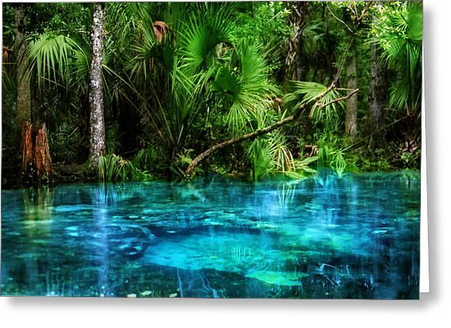River Of Blue Chassahowitzka Nwr Greeting Card