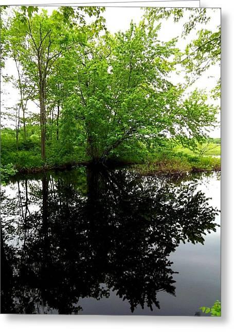 River Reflections Greeting Card by Dancingfire Brenda Morrell