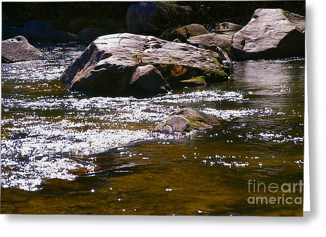 River Reflections Greeting Card by JW Hanley