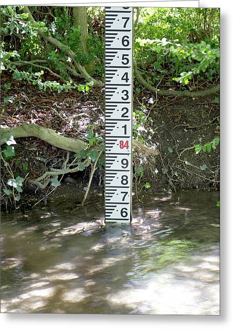 River Scale Greeting Card