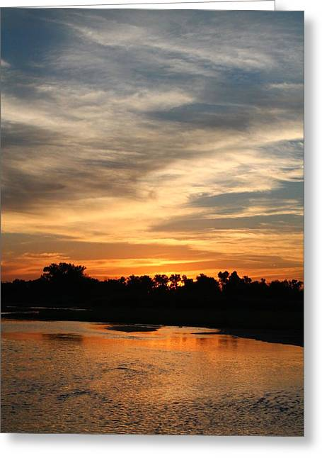Greeting Card featuring the photograph River Sun by Alicia Knust