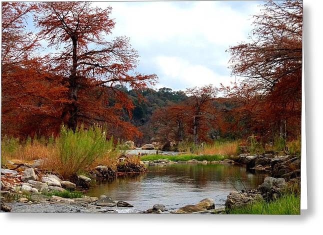 Greeting Card featuring the photograph River Tranqulity by David  Norman
