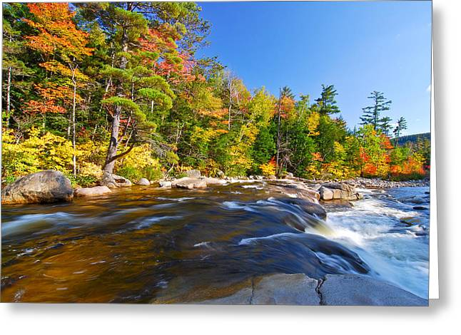 River View N.h. Greeting Card
