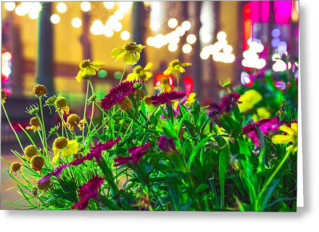 Riverpark Potted Greeting Card by Cj Avery