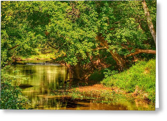 River's Bend Greeting Card by Kathi Isserman