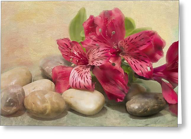 Rivers Rocks With Lily Of The Niles Greeting Card
