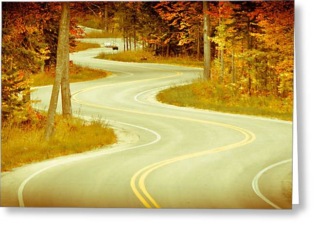 Road Bending Through The Trees Greeting Card