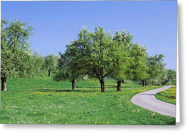 Road Cantone Zug Switzerland Greeting Card by Panoramic Images