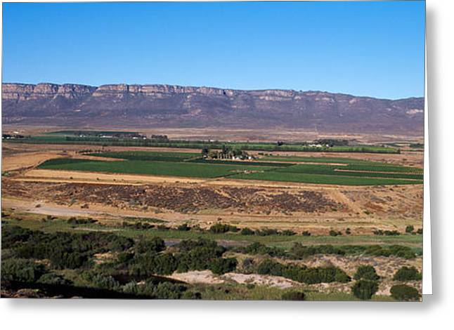 Road From Cape Town To Namibia Greeting Card by Panoramic Images
