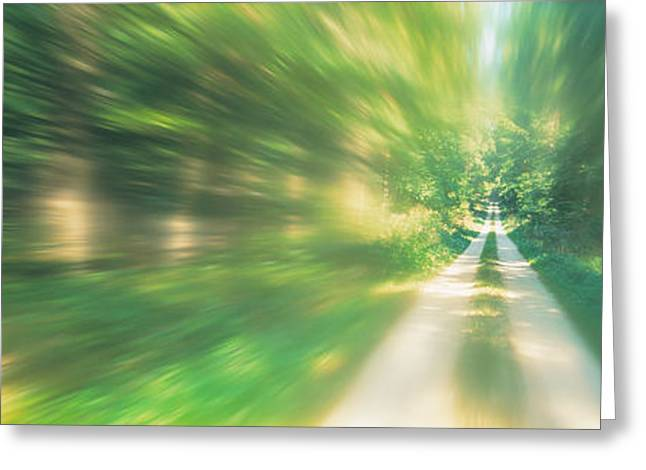 Road, Greenery, Trees, Germany Greeting Card by Panoramic Images