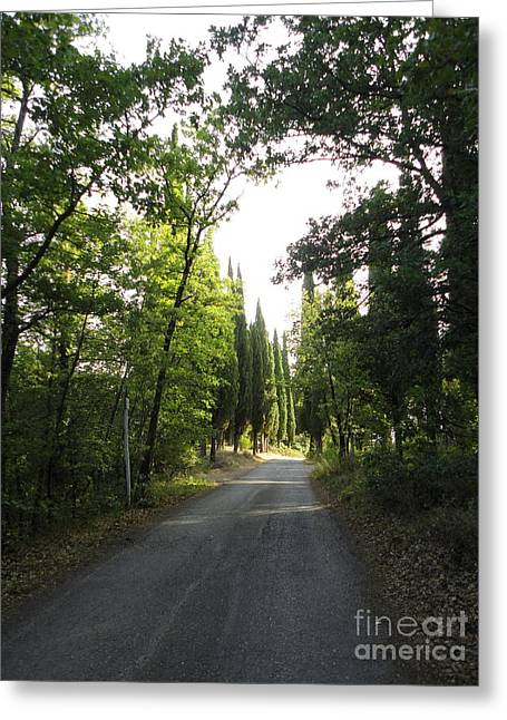 Road In Loppiano Greeting Card